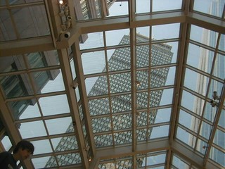 Thru_the_glass_roof